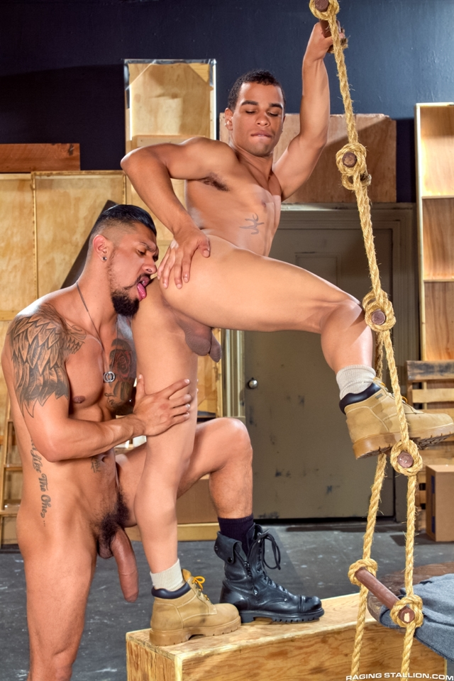 Boomer-Banks-and-Trelino-Raging-Stallion-gay-porn-stars-gay-streaming-porn-movies-gay-video-on-demand-gay-vod-premium-gay-sites-007-male-tube-red-tube-gallery-photo