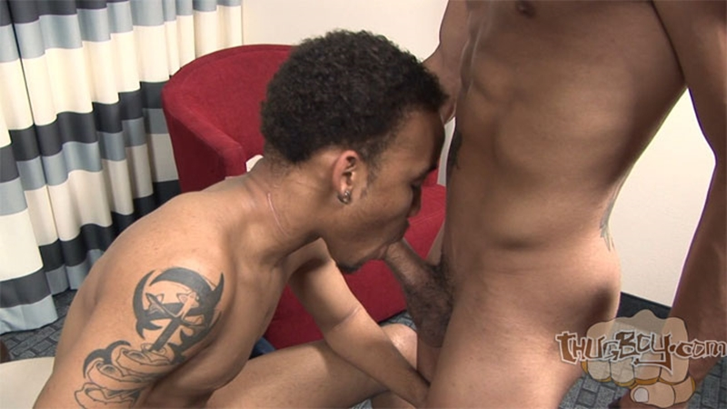 ThugBoy-Baby-Star-Chaos-Cartier-gay-thug-porn-black-gay-thugs-gay-black-thugs-thug-gay-porn-gay-black-thug-porn-thugboy-black-thug-porn-003-tube-download-torrent-gallery-sexpics-photo