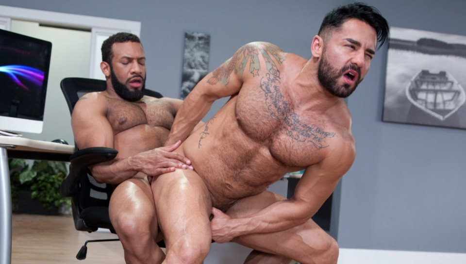 Men for Men Blog 69492_03_01 Bruno Bernal moans loudly as Jay Landford's huge dick stretches his butt hole to the max Raging Stallion  tongue Streaming Gay Movies Smooth ragingstallion.com RagingStallion Tube RagingStallion Torrent RagingStallion Jay Landford RagingStallion Bruno Bernal raging stallion premium gay sites Porn Gay nude RagingStallion naked RagingStallion naked man jockstrap jock Jay Landford tumblr Jay Landford tube Jay Landford torrent Jay Landford RagingStallion com Jay Landford pornstar Jay Landford porno Jay Landford porn Jay Landford penis Jay Landford nude Jay Landford naked Jay Landford myvidster Jay Landford gay pornstar Jay Landford gay porn Jay Landford gay Jay Landford gallery Jay Landford fucking Jay Landford cock Jay Landford bottom Jay Landford blogspot Jay Landford ass hot naked RagingStallion Hot Gay Porn hole HIS gay video on demand gay vid gay streaming movies Gay Porn Videos Gay Porn Tube Gay Porn Blog Free Gay Porn Videos Free Gay Porn face Cock cheeks cheek Bruno Bernal tumblr Bruno Bernal tube Bruno Bernal torrent Bruno Bernal RagingStallion com Bruno Bernal pornstar Bruno Bernal porno Bruno Bernal porn Bruno Bernal penis Bruno Bernal nude Bruno Bernal naked Bruno Bernal myvidster Bruno Bernal gay pornstar Bruno Bernal gay porn Bruno Bernal gay Bruno Bernal gallery Bruno Bernal fucking Bruno Bernal cock Bruno Bernal bottom Bruno Bernal blogspot Bruno Bernal ass ass